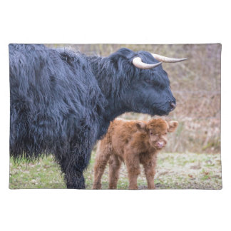 生まれたばかりのの黒いスコットランドの高地居住者の母牛 ランチョンマット