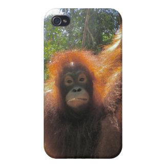 生まれる野生の映画俳優 iPhone 4 ケース