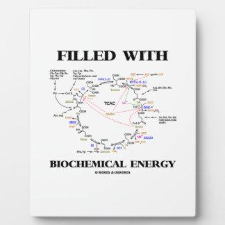 生化学的なエネルギー(Krebs周期)で満たされる フォトプラーク