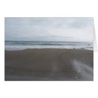 生命の海 カード