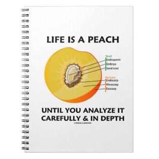 生命は深さを注意深く分析するまでモモです ノートブック