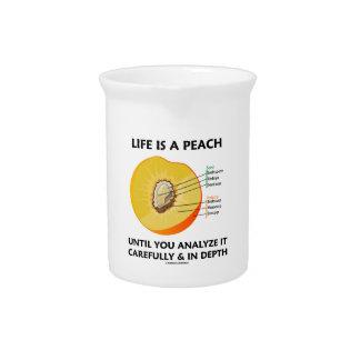 生命は深さを注意深く分析するまでモモです ピッチャー