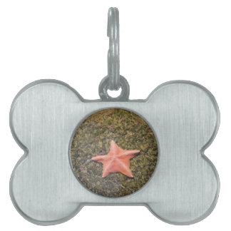 生存starfish.JPG ペットネームタグ
