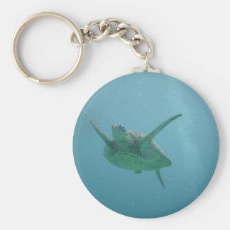 生息環境のウミガメ キーホルダー