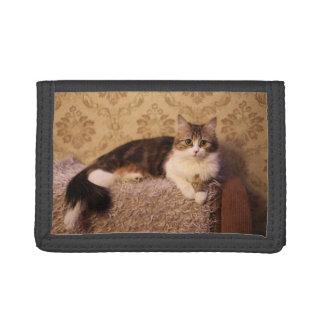 用心深い子猫 ナイロン三つ折りウォレット