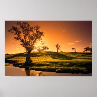田園アデレードの丘の景色 ポスター