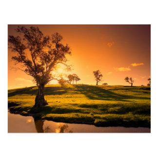田園アデレードの丘の景色 ポストカード