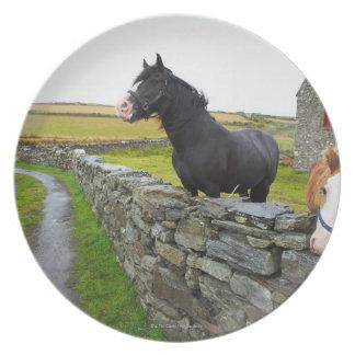 田園イギリスの農場の2頭の馬 プレート