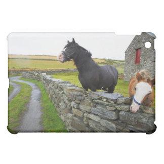 田園イギリスの農場の2頭の馬 iPad MINIカバー