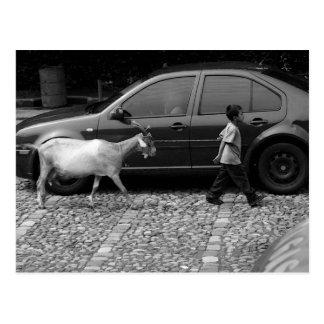 男の子およびヤギのLaアンチグアグアテマラ ポストカード