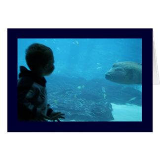 男の子は魚に会います カード