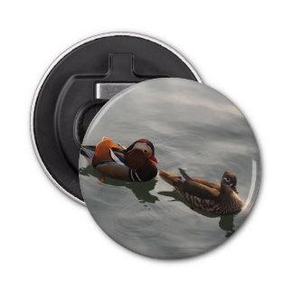 男女の組のMandrainは水泳を引込めます 栓抜き