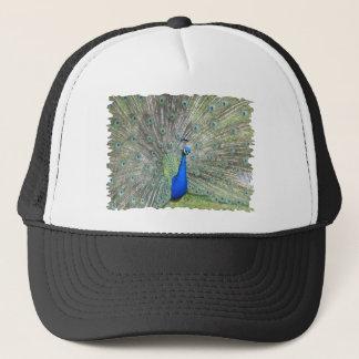 男性のインドの孔雀ファンそれは尾羽です キャップ