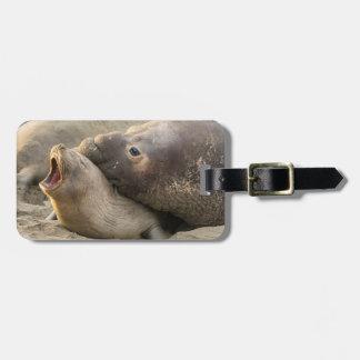 男性のゾウアザラシは女性にキスマークを与えます ラゲッジタグ