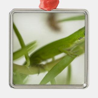 男性の緑のanole、aのAnolisのcarolinensis、 メタルオーナメント