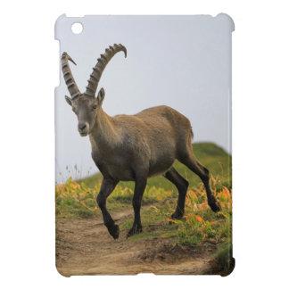 男性の野生の高山の、カプラのibex、かsteinbock iPad miniケース