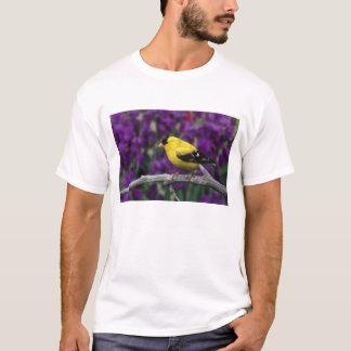 男性、夏の羽のアメリカのGoldfinch、 Tシャツ