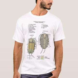男性TrilobiteのTシャツ Tシャツ
