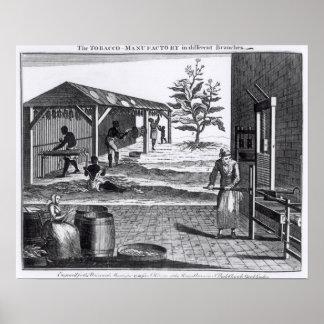異なった枝のタバコの製造所 ポスター