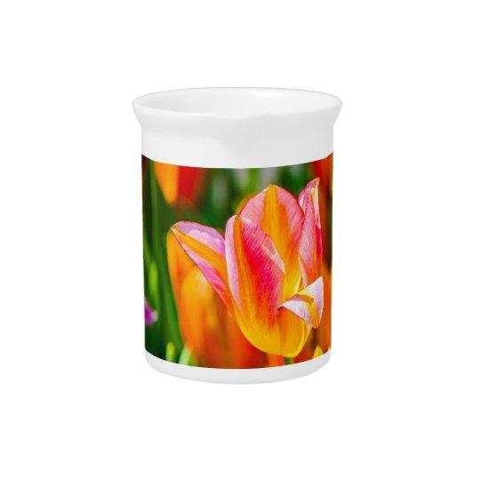 異なった色のチューリップの花 ピッチャー