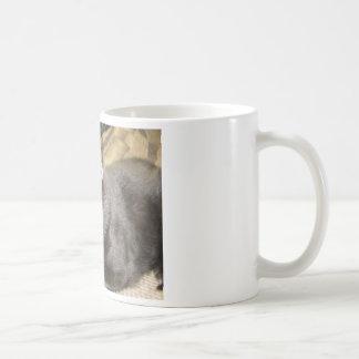 異教徒猫のコップ コーヒーマグカップ