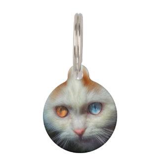 異様目のペルシャの子ネコ ペット ネームタグ