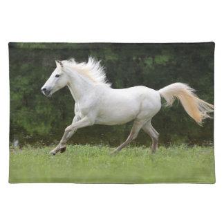 疾走する白馬 ランチョンマット