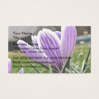 白いおよび紫色のクロッカスの花 名刺