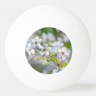 白いさくらんぼの花 卓球ボール