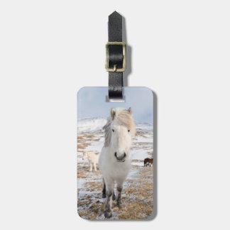 白いアイスランドの馬、アイスランド ラゲッジタグ