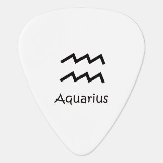 白いアクエリアスの(占星術の)十二宮図1月20日- 2月18日 ギターピック