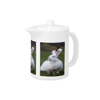 白いアンゴラのバニーウサギのティーポット