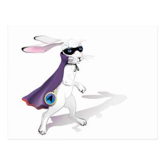 白いウサギ ポストカード