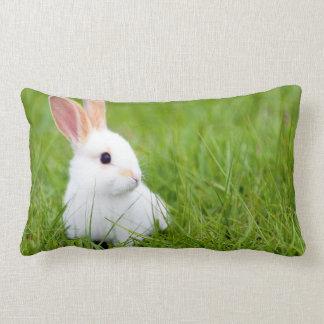 白いウサギ ランバークッション