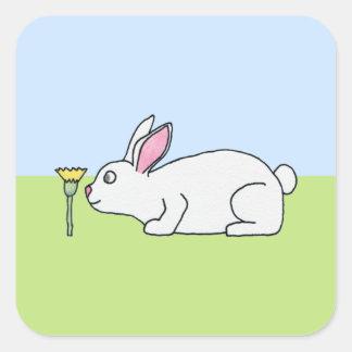 白いウサギ。 芝生 スクエアシール