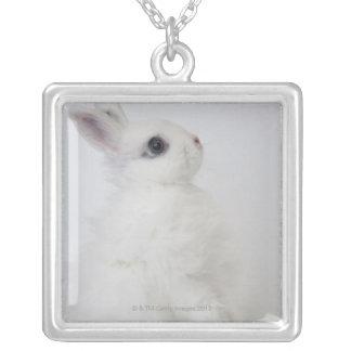 白いウサギ。Wooly.ジャージー シルバープレートネックレス