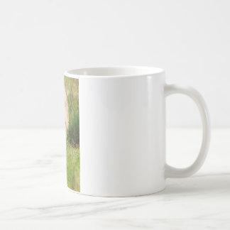 白いオオカミ コーヒーマグカップ