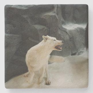 白いオオカミ ストーンコースター