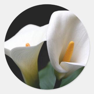白いオランダカイウユリの花のステッカー ラウンドシール