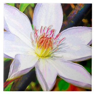 白いクレマチスの開花 タイル