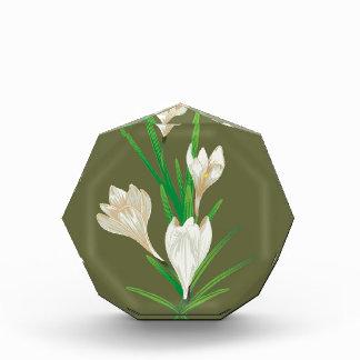 白いクロッカスの花2 表彰盾