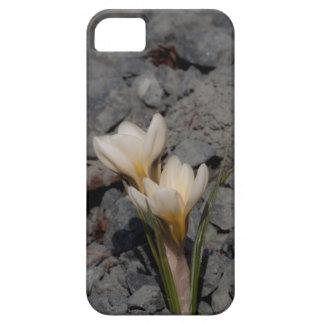 白いクロッカス iPhone SE/5/5s ケース