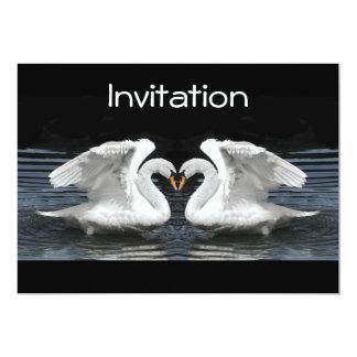 白いコブハクチョウの鏡像 カード