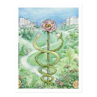 白いコート、緑の世界(郵便はがき) ポストカード