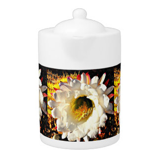 白いサボテンの花の茶ポット