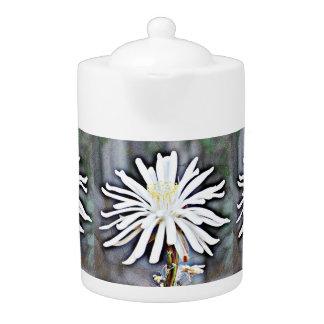 白いサボテンの開花の茶ポット