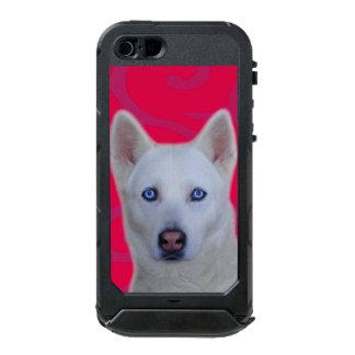白いシベリアンハスキーのiPhone SE/5/5sの地図書ID™ ウォータープルーフiPhone SE/5/5sケース