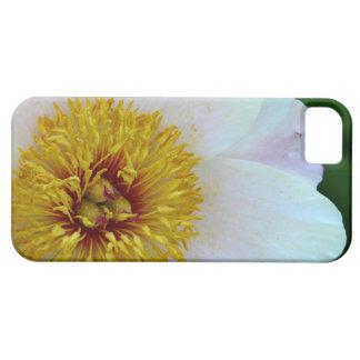 白いシャクヤク iPhone SE/5/5s ケース