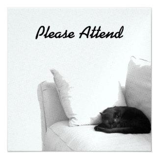 白いソファーの睡眠の灰色猫 13.3 スクエアインビテーションカード