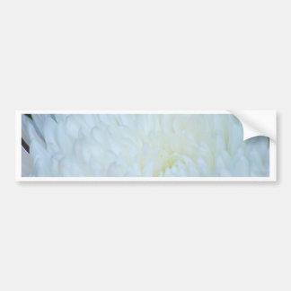 白いダリアの花びら バンパーステッカー